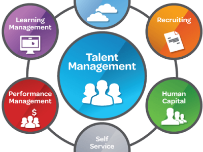 Strategic Human Resource & Talent Management